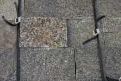 Kamień Dekoracyjny panterka
